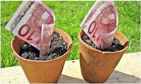 ¿Existe algún plan de pensiones que garantice el capital aportado y que no tenga pérdidas?